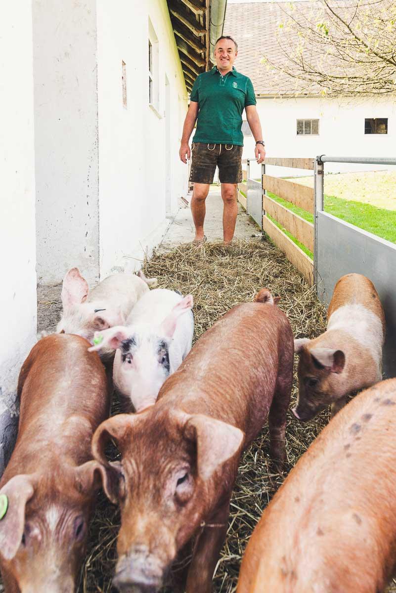 Erhalt alter Landrassen wie das Bentheimer Landschwein und das Berkshire Schwein