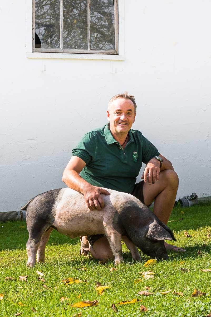 Schwäbisch-Hällischen Landschweins mit Einkreuzung von Duroc