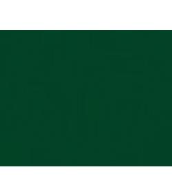 Brunnwaldl's